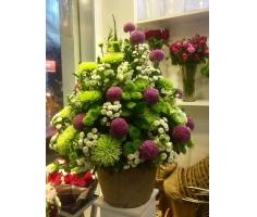 Hoa giỏ đẹp - DH148