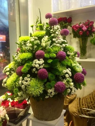 Hoa giỏ đẹp - DH327